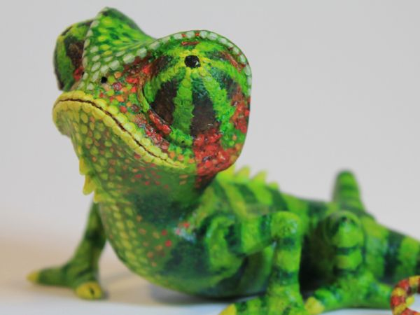<span>Chameleon Model</span><i>→</i>